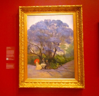 Under the jacaranda 1903