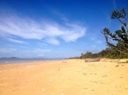 Shipwrecked at Wongaling Beach