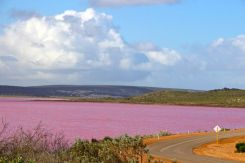 Pink Lake at Port Gregory