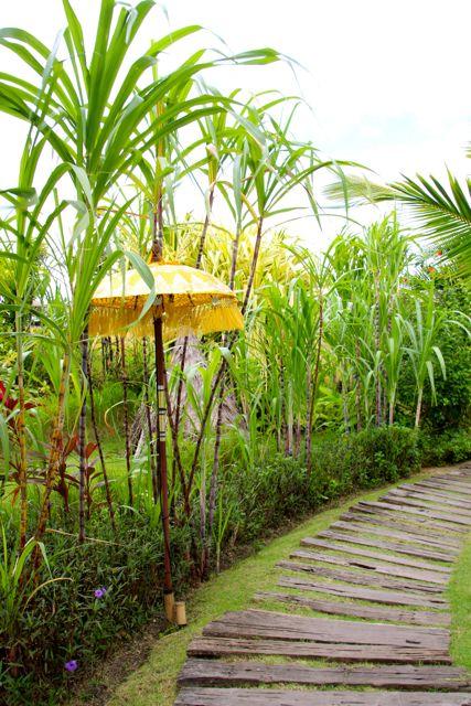 Pathways, Bali