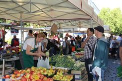 Markets in Prenzlauer