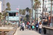 Venice Pier - note the dog.....