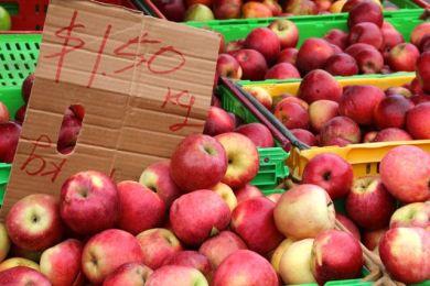 Farmers Market Wellington