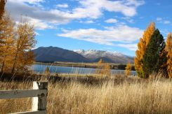 Loving the autumn colours at Lake Tekapo
