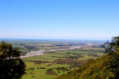 Looking over the Canterbury Plains from the trail