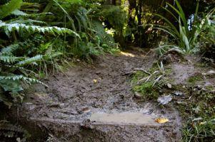 Slippy when wet.......