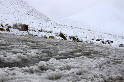Slushy at Lindis Pass Summit