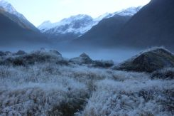 Frosty morning at Pearl Flats