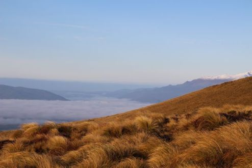 Morning cloud over Lake Te Anau