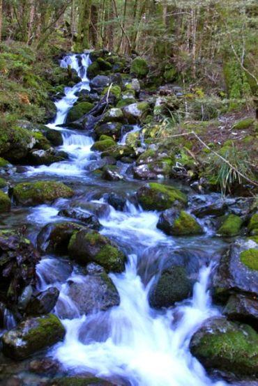 plenty of streams to cross and admire
