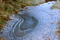 This icy puddle reminded me of a weather chart
