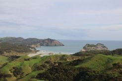 Overlooking Wharariki Beach from the trail