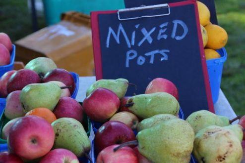 Busselton Farmers Market