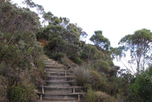One of many set of steps on the way Bluff Knoll