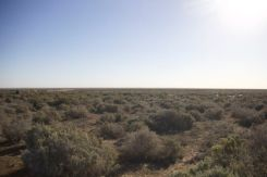 The Mungo Lake bed