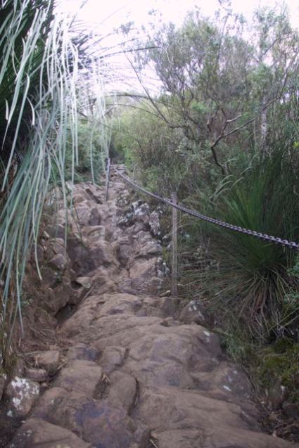 Oh that scramble - almost there, Mt Warning