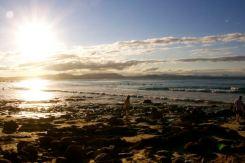 Picking Shells, Wattegos Beach, Byron Bay