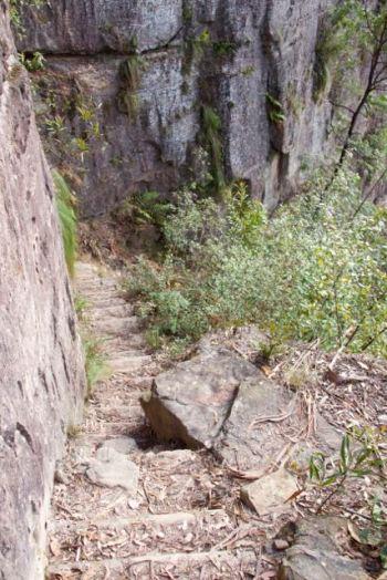 Sooo many steps.....Blue Mountains