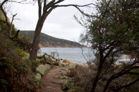 The end of the trail, Sleepy Bay